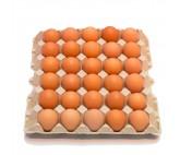 Huevo bandeja 30 Unidades